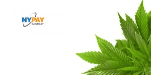 Legal Cannabis—The Money Problem @ K&L Gates LLP